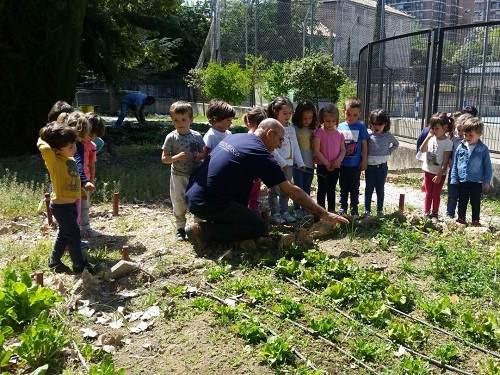 Huerto y granja escolar