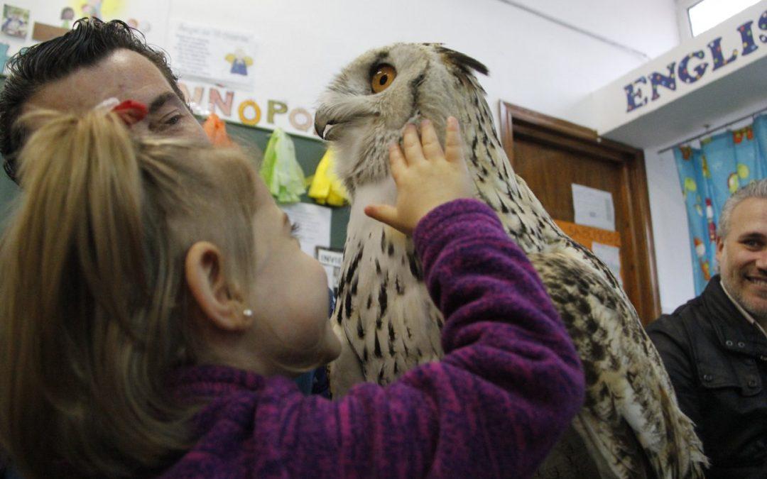 Visita de aves en Infantil 3 años – Proyecto de los Pollitos